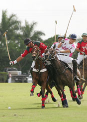 polo-players